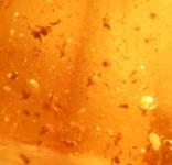 Various residues - pollen?